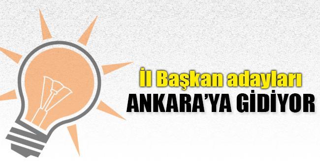 AK Parti Bitlis İl Başkan Adayları Ankara'ya Çağrıldı