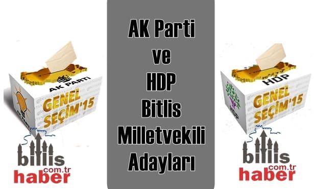 AK Parti ve HDP Bitlis Milletvekili Adayları
