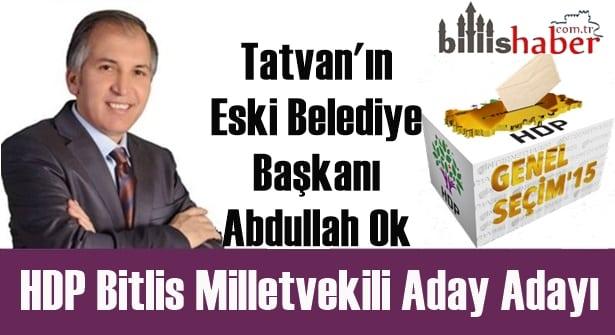 Abdullah Ok HDP Bitlis Milletvekili Aday Adayı