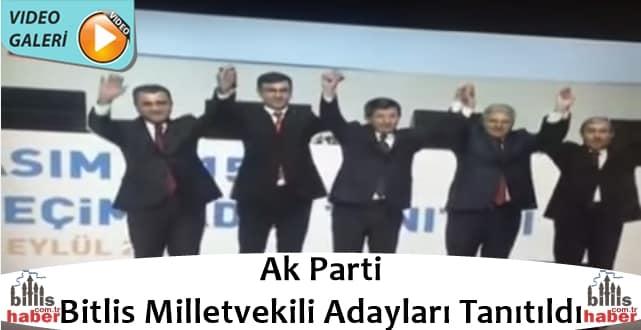 Ak Parti Bitlis Milletvekili Adayları Tanıtıldı