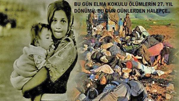 Bitlis Belediye Eş Başkanlarından Halepçe Katliamı Mesajı
