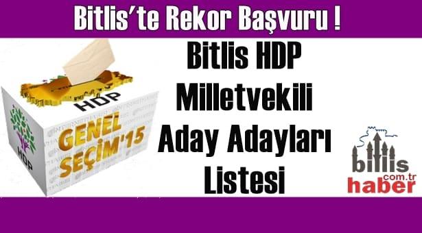 Bitlis HDP Milletvekili Aday Adayları Listesi