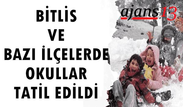 Bitlis ve Bazı İlçelerde Okullar Tatil Edildi