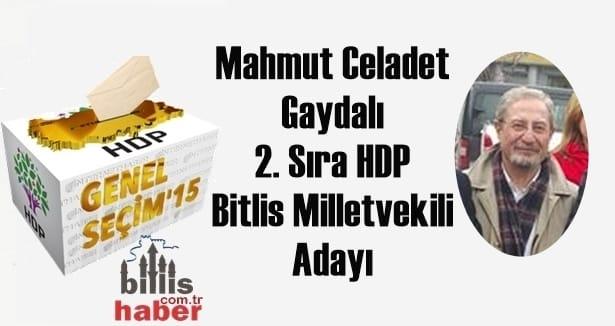 Mahmut Celadet Gaydalı 2. Sıra HDP Bitlis Milletvekili Adayı