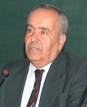 Hamza Zülfikar