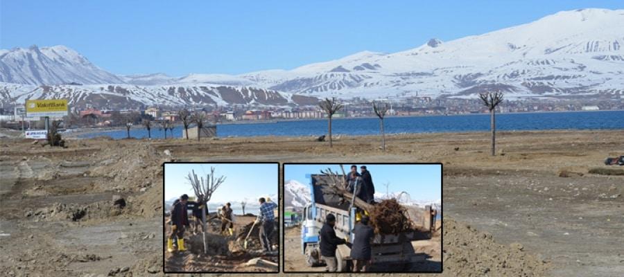 Tatvan Belediyesi, Mesire Alanı Yapacak