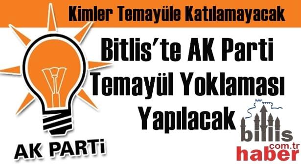 Yarın Bitlis'te AK Parti Temayül Yoklaması Yapılacak
