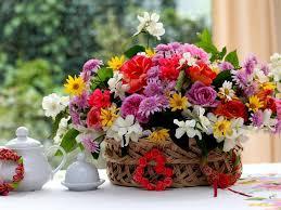 Çiçek Seçiminde Kolaylık