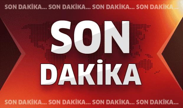 Bitlis'te Karınca Karakoluna Saldırı