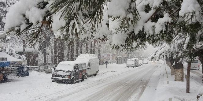 Tatvan'da yoğun kar yağışı