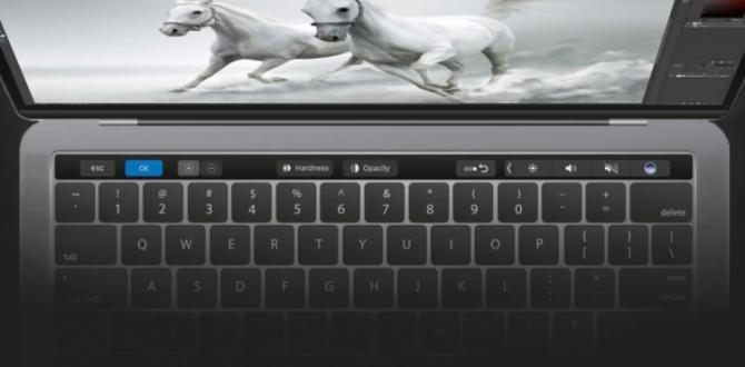 Yeni MacBook Pro'da beklenen özellik geldi